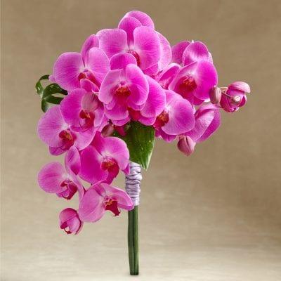 Glorious Bouquet