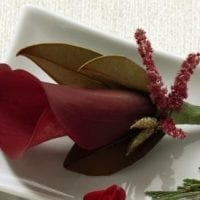 Red Boutonniere