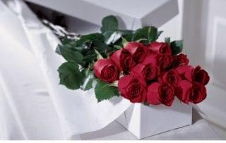 Valentine's Day - Roses