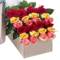 2 Dozen Assorted Color Roses