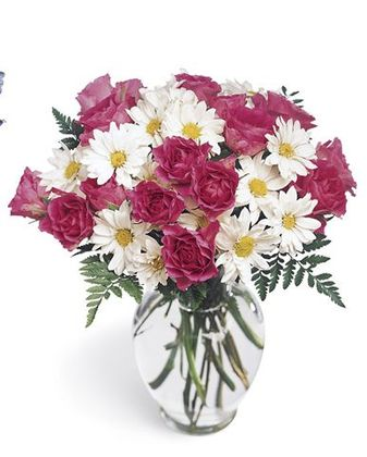 April birth flower, daisy, florist richmond hill-toronto flower delivery, Yonge flower shop