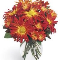 The November birth flower bouquet is a blessing in the autumn season.