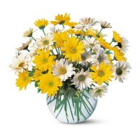 Order this Get well Soon flowers bouquet and get 10% OFF - Same Day Delivery anywhere in the GTA - Tornot flower delivery - flower delivery Markham - Best buy