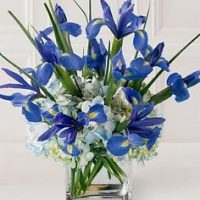 SAME DAY DELIVERY of Iris & Hydrangea flowers in the GTA & St. Joseph's Health Centre Hospital Toronto - flower delivery Ajax