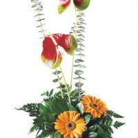 Exotic Beauty bouquet, a modern wedding anniversary gift