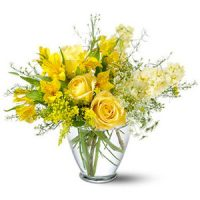 Delicate Yellow Flowers - Toronto Bulk Flowers - get 10% OFF - Order now - Same day flower delivery Thornhill