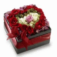 Present your heart in shape of roses in a black box