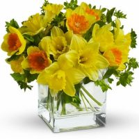 March birth flowers bouquet is a blessing of nature for your loved ones.