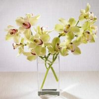 cymbidium orchid flower bouquet - SAME DAY DELIVERY in GTA & major mackenzie hospital, Richmond Hill - flower delivery Oakville – Florist near me