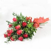 Coral Roses by Flower Shop