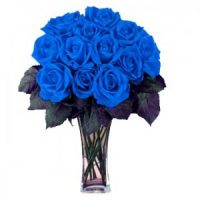 18 stems blue roses by GTA flower shop, Richmond Hill.