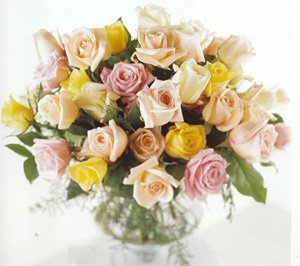 Rosa Rose, an exquisite floral gift for special occasions