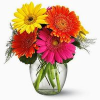 Fiesta Gerbera vase, unique thank you gift of vibrant colors