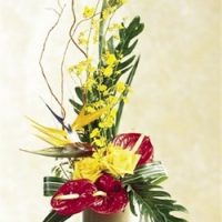 Bird of Paradise flower arrangement, an assorted floral gift