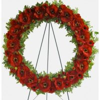 Poppy Wreaths Remembrance Day
