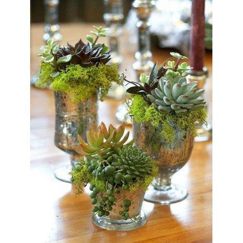 Bridal Gift Ideas: Toronto Bulk Flowers