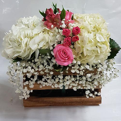 Toronto bulk flower