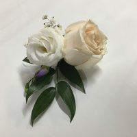 Toronto Bulk Flowers 21