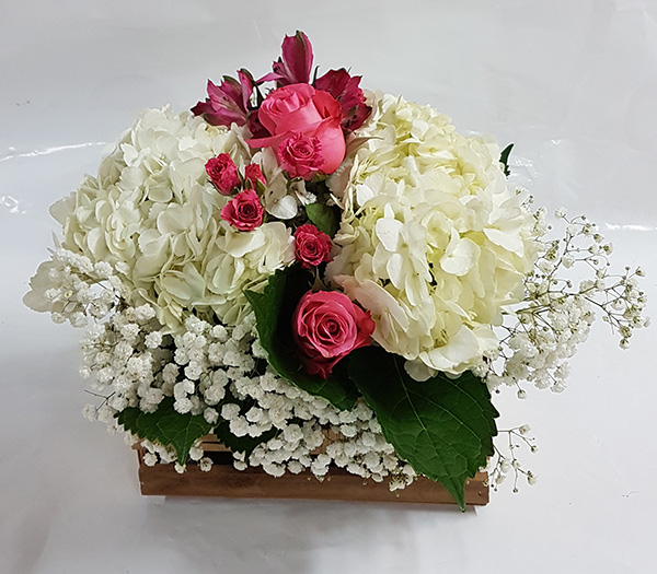 Toronto Bulk Flowers 3
