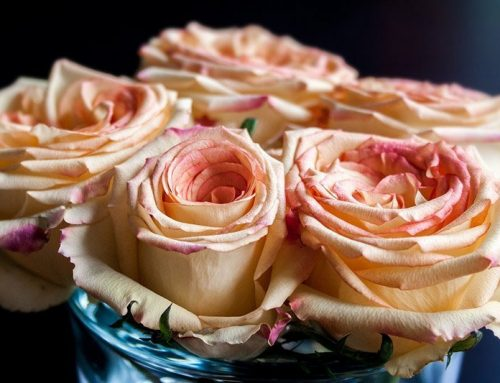 Sweetest Day Flowers,This Is What Your Loved Ones Deserve!