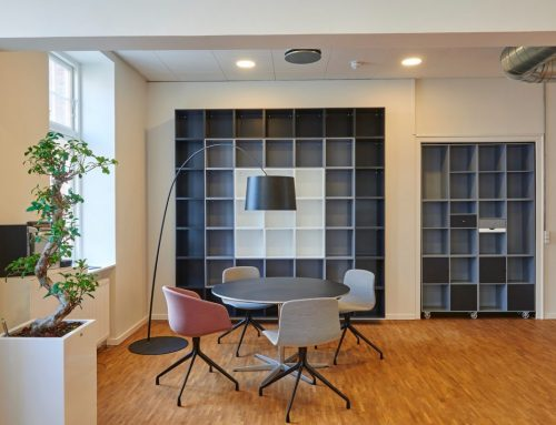 What are the best three options of indoor office plants in Toronto, Canada?