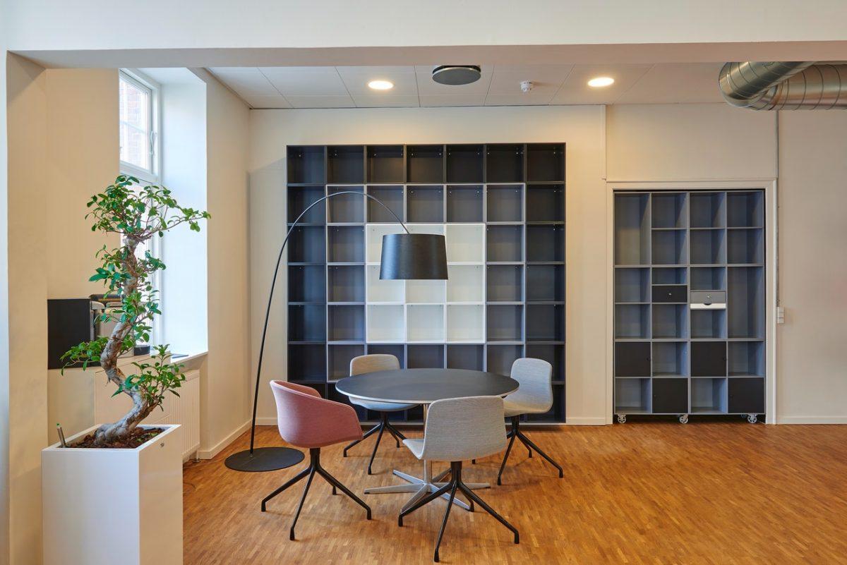 Indoor office plants,